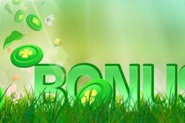Bonus Casino Image